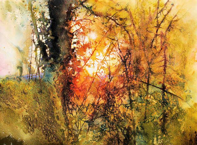 Last Light in the Woven Hedgerow