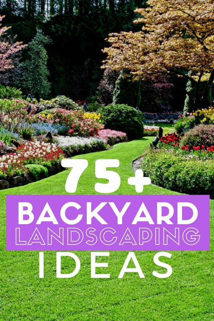 Your Yard Design Own