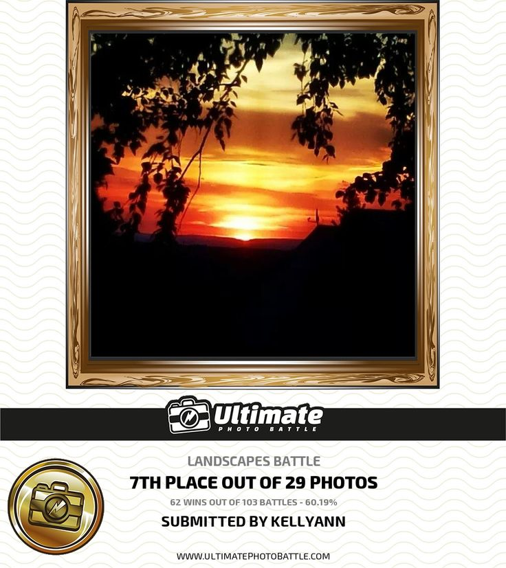 Online Photography Contest | Ultimate Photo Battle