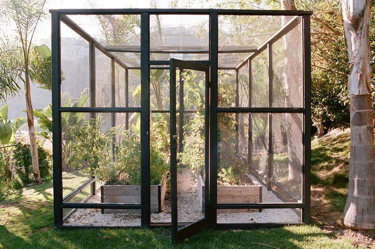Ideale constructie voor een kleine moestuin die bescherming nodig heeft of voor een bessentuin. foto www.brianwferry.com