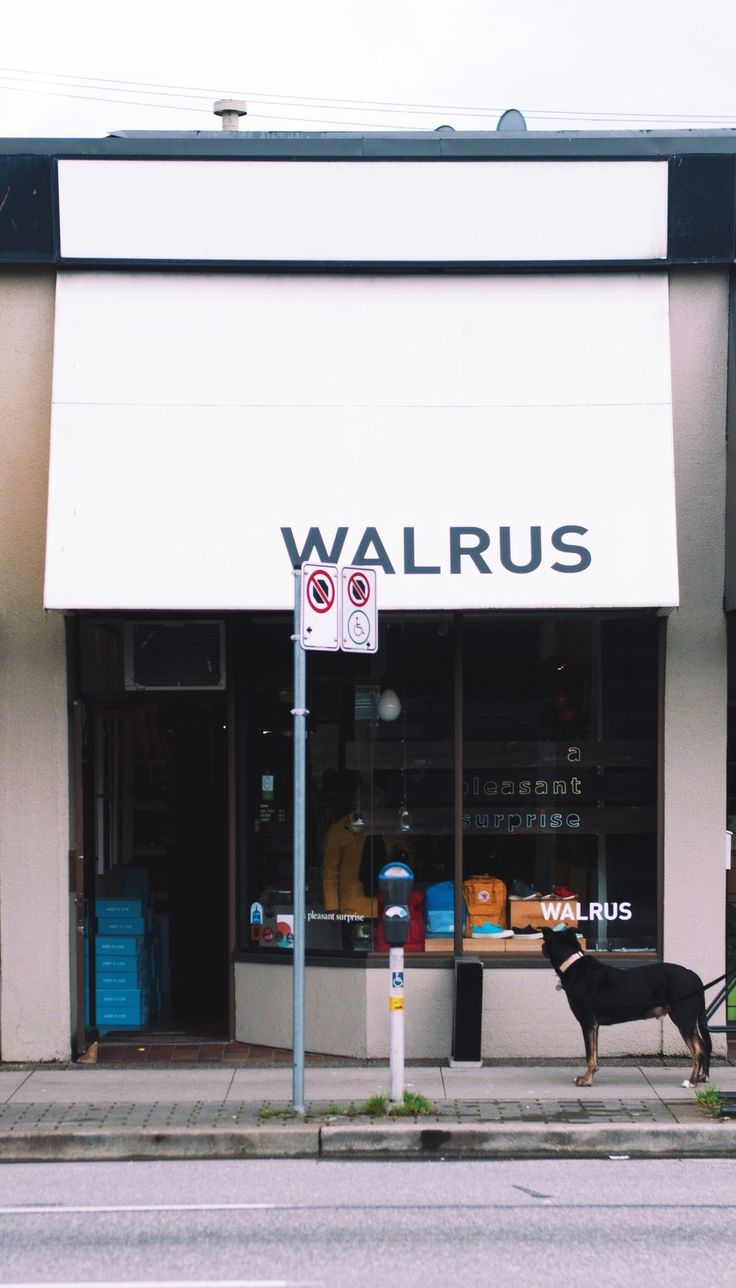 Walrus in Cambie Village, Vancouver - thelocalvisitor.com #vancouver #travel #shopping #cambie #local