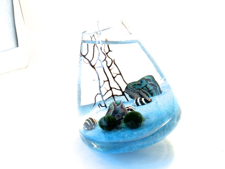 Checkout this awesome giveaway by EclecticZenMarimo http://www.eclecticzenmarimo.com/