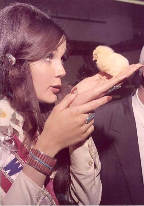 Lynda Carter, bird whisperer