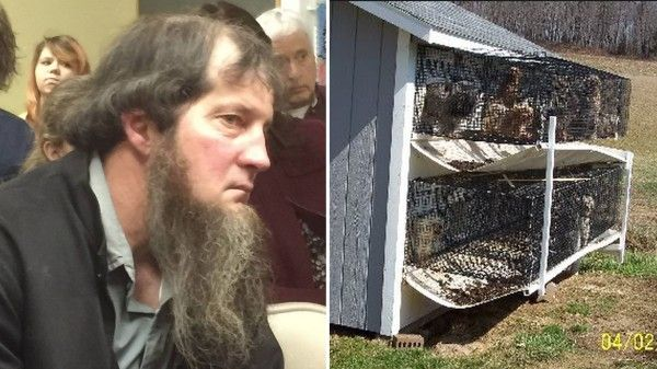 Amish get license for new puppy mill in Millersburg, PA