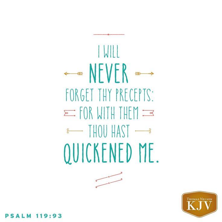 KJV Verse of the Day: Psalm 119:93