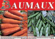 Catalogue Baumaux
