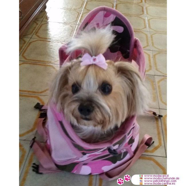 Mochila para Perrito en Rosa Camuflaje #ModaCanina #Yorkshire - Mochila en tela Rosa camuflaje, hecha de tejido denim; se puede usar como una mochila normal (con el cachorro detrás) o como una mochila porta bebé