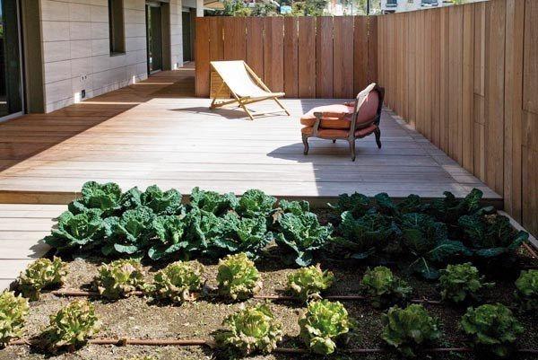 Diseñar el huerto ecológico es muy importante pues hay que distribuir bien los espacios disponibles para aprovecharlos al máximo y poder conseguir los mejores resultados. Un pequeño huerto...