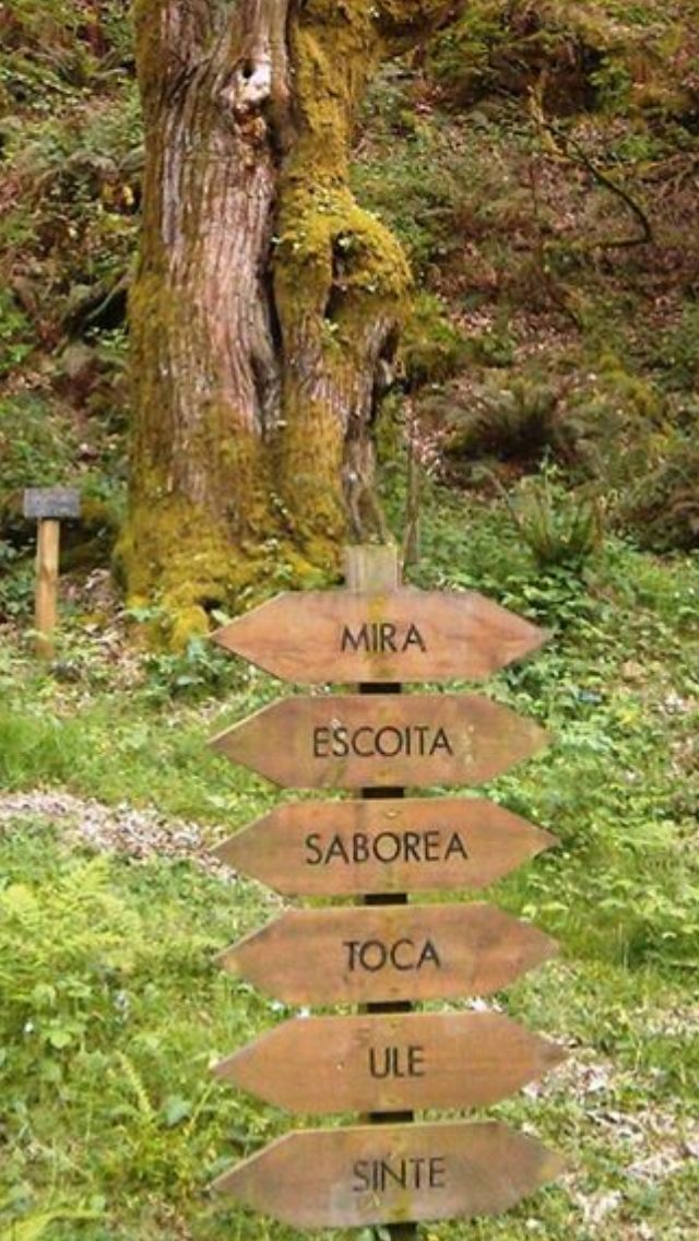 Sarria. Galicia.