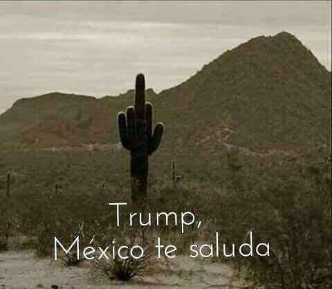 Trump, Mexico salutes you.
