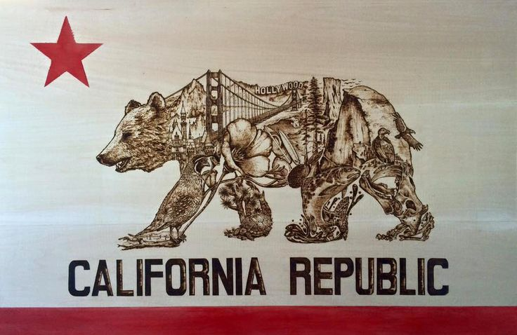 ArtStation - California Flag - Wood Burning, Liliana Mai