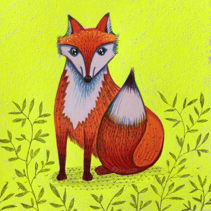 F is for Fox, coloured pencil drawing by Debi Hudson