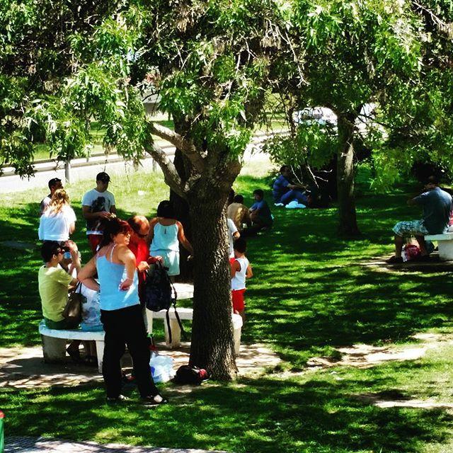A la busca de la sombra en plena operacion salida #vdverano #Rioja