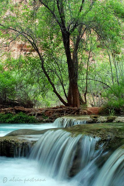 Havasu Creek, Grand Canyon; photo by Alvin Pastrana