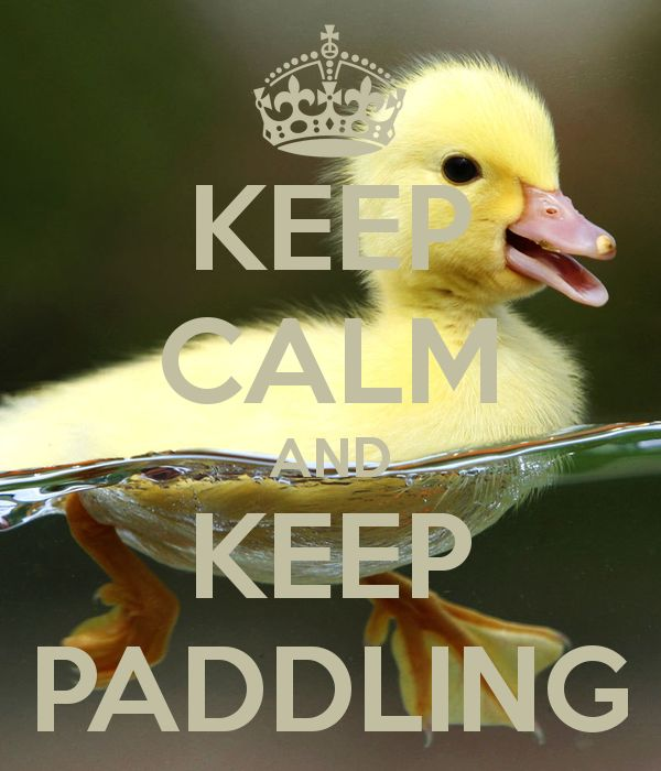 KEEP CALM AND KEEP PADDLING