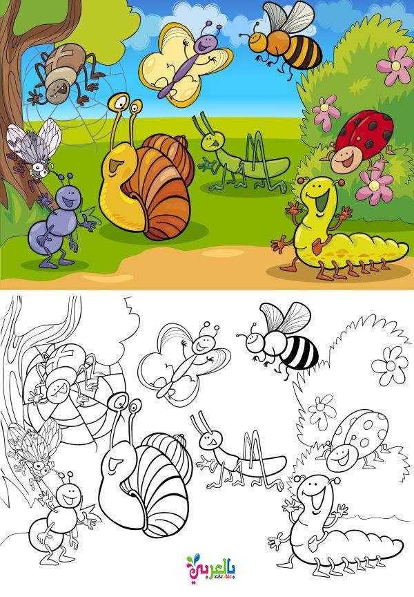 اوراق عمل للتلوين عن الربيع للاطفال رسومات للطباعة عن فصل الربيع Coloring Books Cartoon Illustration Cute Elephant Cartoon