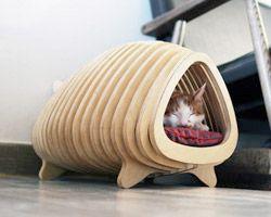 Cat rib bone structured shelter