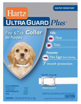 Collar Antipulgas Hartz para Perro Cachorro - Encuéntralo Petsy.mx