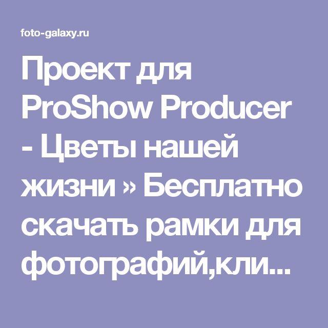 Проект для ProShow Producer - Цветы нашей жизни » Бесплатно скачать рамки для фотографий,клипарт,шрифты,шаблоны для Photoshop,костюмы,рамки для фотошопа,обои,фоторамки,DVD обложки,футажи,свадебные футажи,детские футажи,школьные футажи,видеоредакторы,видеоуроки,скрап-наборы