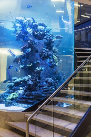 amazing-cylynder-aquarium