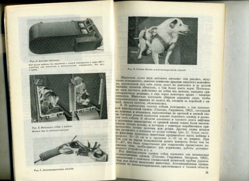 training of dogs space flights USSR soviet kosmos dogs Belka Strelka Laika Layka in Collectibles, Historical Memorabilia, Other Historical Memorabilia | eBay