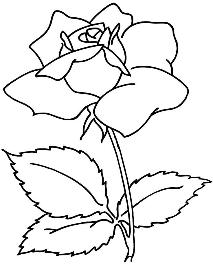 17 best ideas about Blumen Ausmalbilder on Pinterest ...