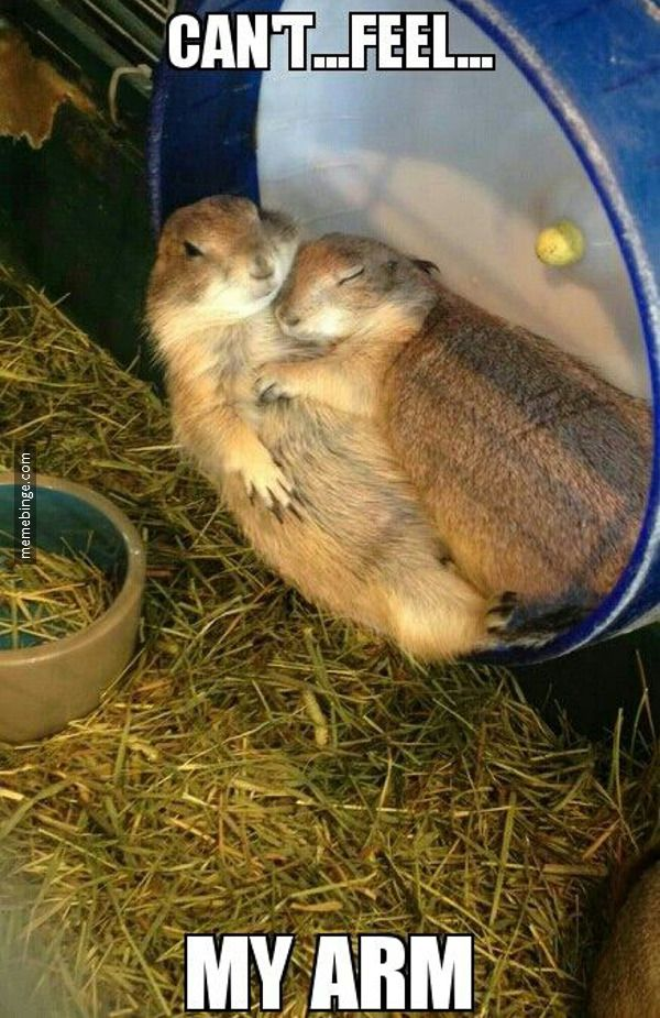 What every married guy learns about cuddling... One of your arms is gonna fall asleep...