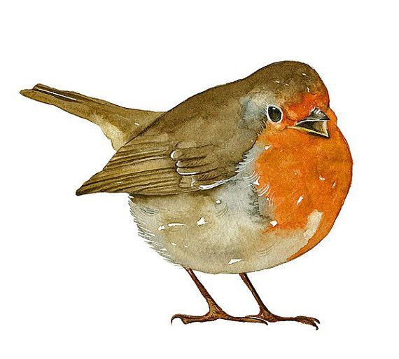 Robin Bird Art Print of my original watercolor by lorisworld