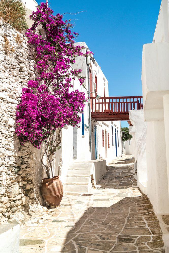 VISIT GREECE| Traditional Greek alley in #Sifnos #visitgreece #greece