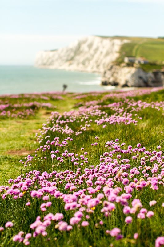 Freshwater Bay, Isle Of Wight A county and the largest island in England, located in the English Channel