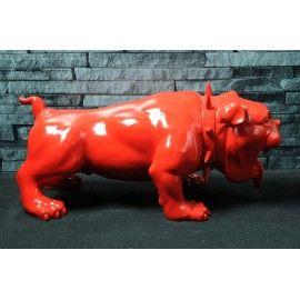 English Devil Bulldog