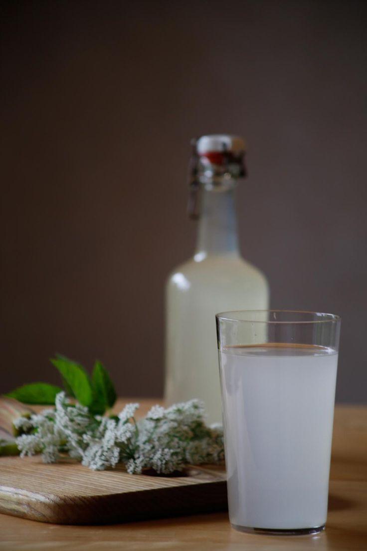 [ Kirskålssaft ] Smakar liknande fläder. 1 liter nyutslagna kirskålsblommor, hopskakade / ½ rabarberstjälk (ca 100 g) / 2½ dl socker   Ruska av insekter fr blommorna, lägg i värmetåligt kärl med finskivad rabarber + socker. Häll i kokhett vatten, täck över. Låt svalna i rumstemperatur några timmar, flytta sen till ett svalt utrymme. Låt stå 1 dygn innan du silar av och häller upp i flaska.