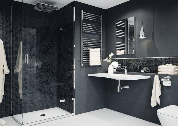 Zdjęcie numer 2 w galerii - Inspirujące aranżacje łazienek. Pomysły na twoją łazienkę