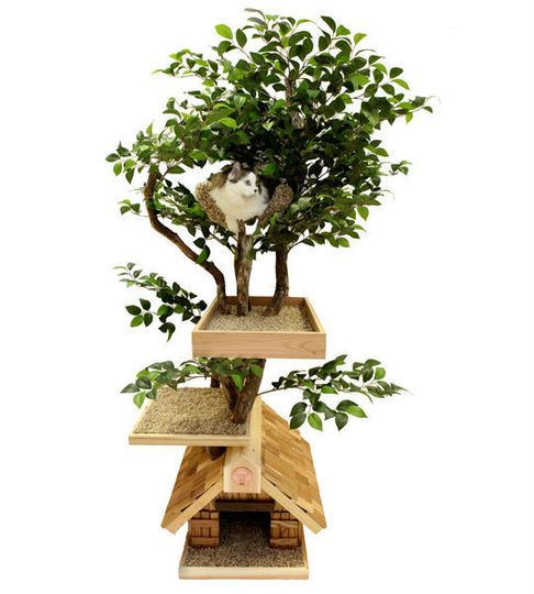 tree house for the kittyTree Houses, Pets, Treehouse, Trees House, Cat Houses, Cat Trees, Cathouse, Kitty, Animal
