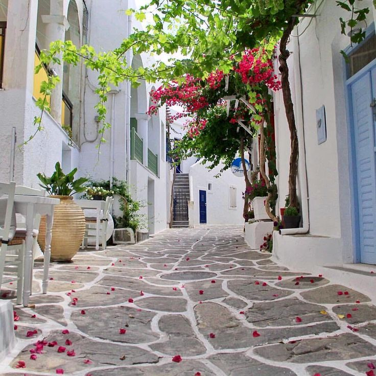 Beautiful & colorful alley of Paros island (Πάρος)❤️. Stunning island with great beaches to discover !!