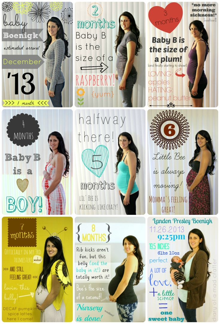 Pregnancy Progression Picture Collage