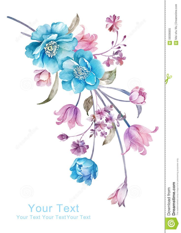 Watercolor Illustration Flower Bouquet In Simple Background - Download From Over 59 Million High Quality Stock Photos, Images, Vectors. Sign up for FREE today. Image: 59336955