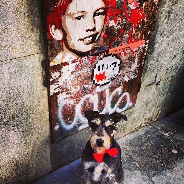 Pipi & Colega en Barcelona.