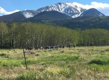 A Rustic Colorado Mountain Wedding Venue Charming Diy