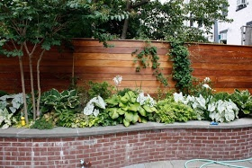Ipe fence and brick planter