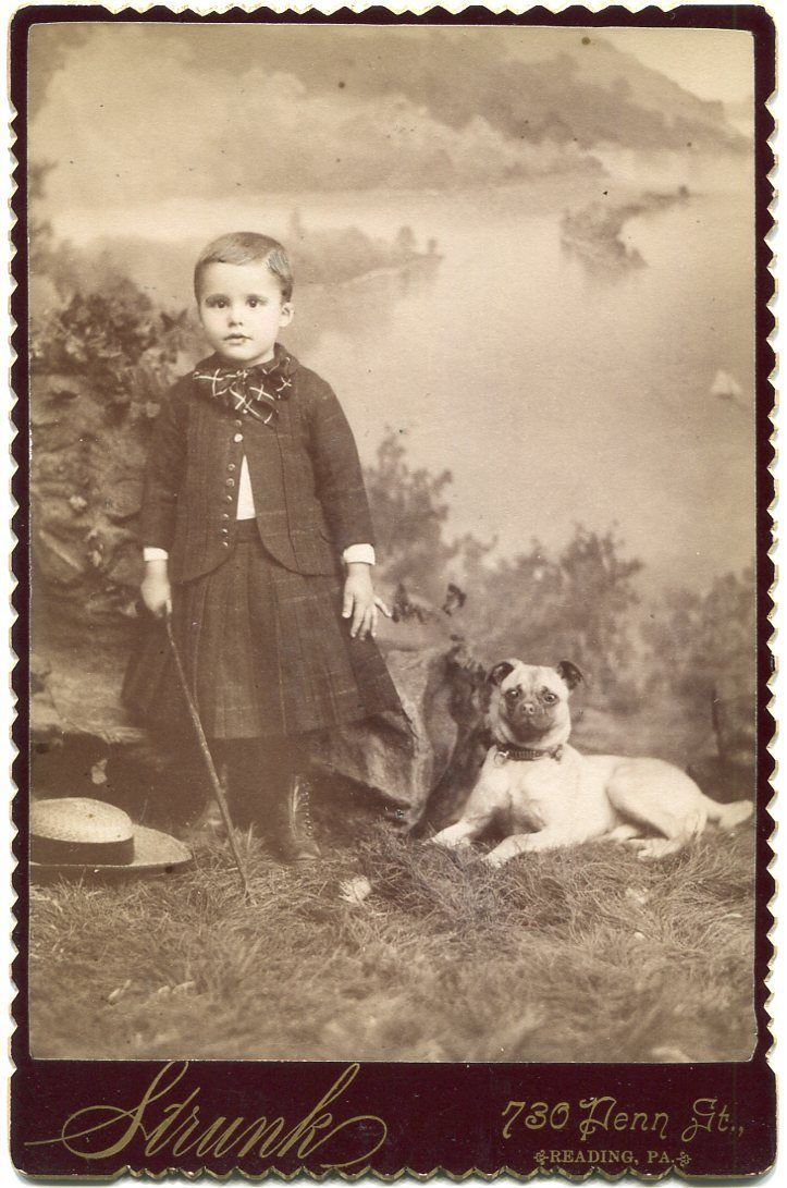 Child Pug Dog 1880s Reading Pa Pennsylvania Cabinet Card Photo