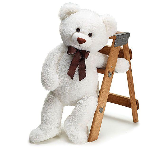 We're celebrating #PlushAnimalLoversDay with our very own Danny Bear! #burtonandburton #plush