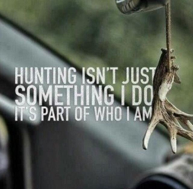 Hunting quote                                                                                                                                                                                 More