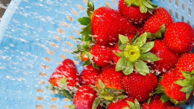Produce Pro Says This Is The RIGHT Way To Wash Your Berries