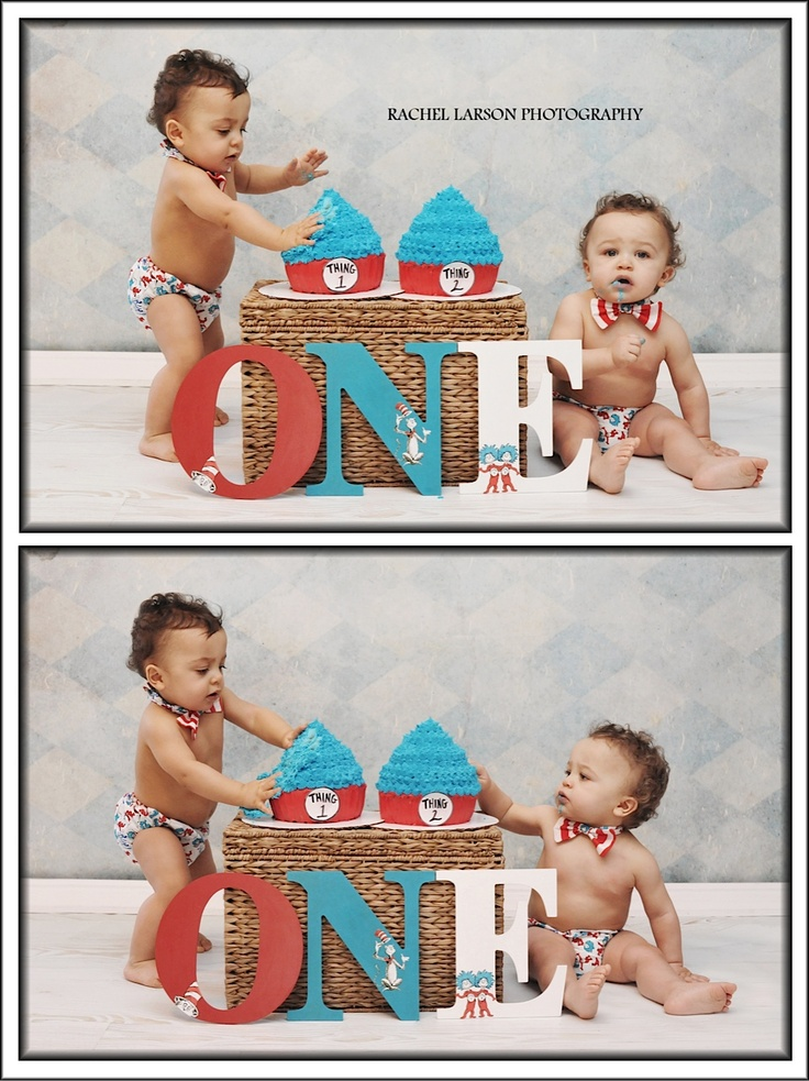 First Birthday / Twins / Dr. Seuss /  Thing One Thing Two / Chilren's Portraits /  Rachel Larson Photography