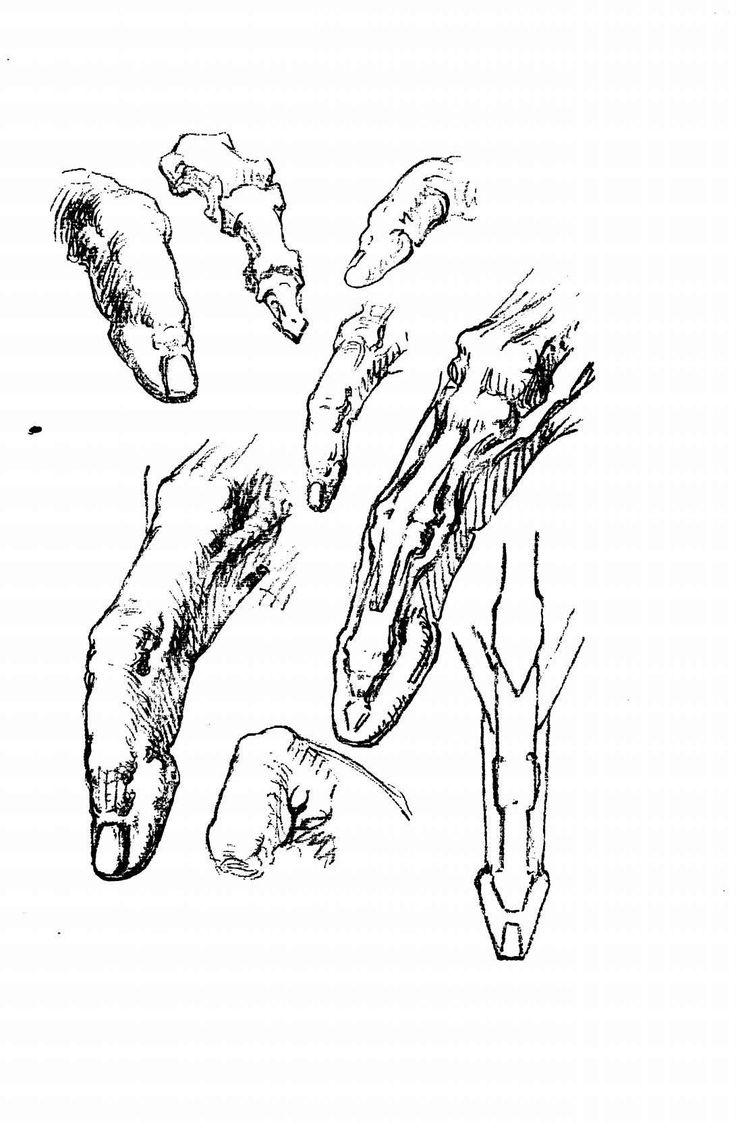 Constructive anatomy in 2020 anatomy free novels books