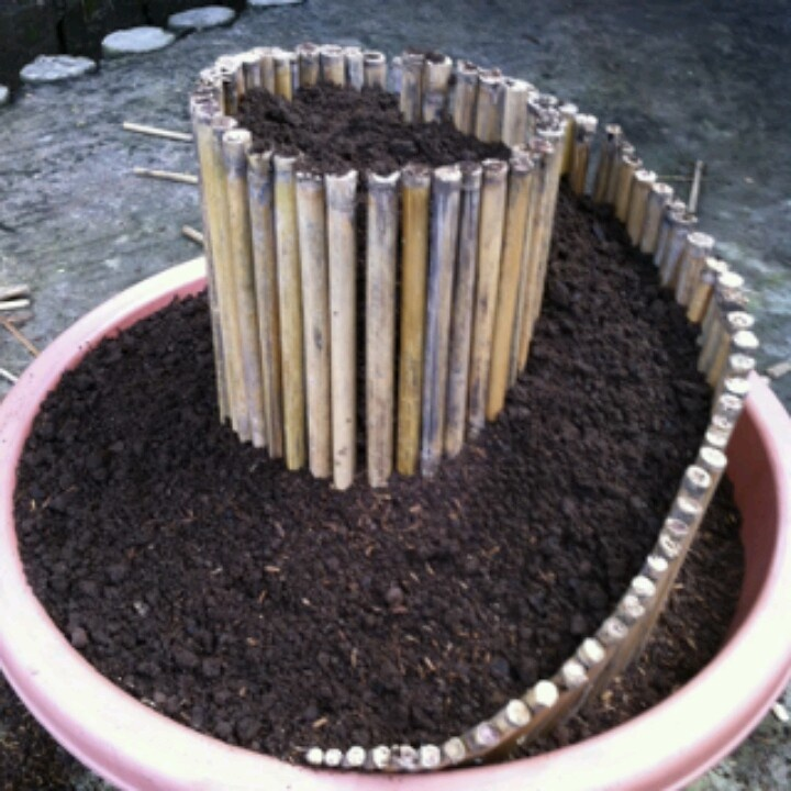 Mini Spiral Garden in a plant container would look nice with succulents could use craft sticks Fairy Gardens