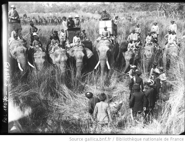 Chasse du roi George V [en Inde et à dos d'éléphant, présentation d'un tigre abattu] : [photographie de presse] / [Agence Rol] - 1