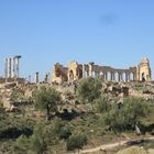 Archaeological Site of Volubilis - Morocco