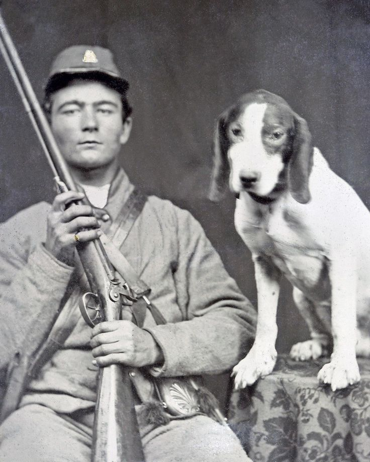 8 by 10 Photo Print Civil War Confederate Soldier, Shotgun, and DOG